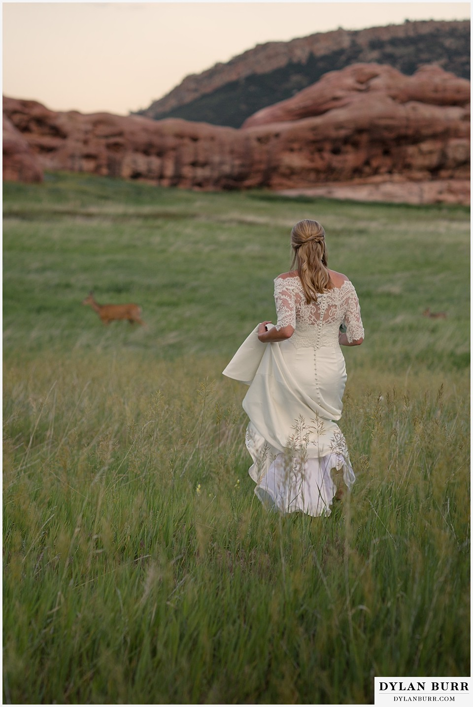 colorado outdoor bridal portrait session with deer