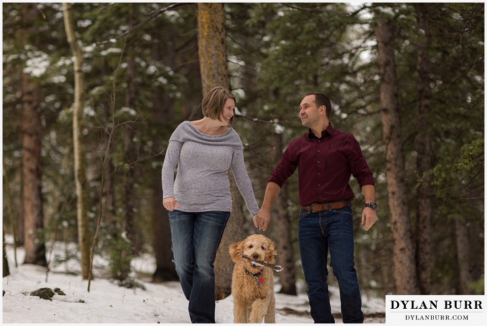 colorado mountain engagement session labradoole dog in photos carrying a stick