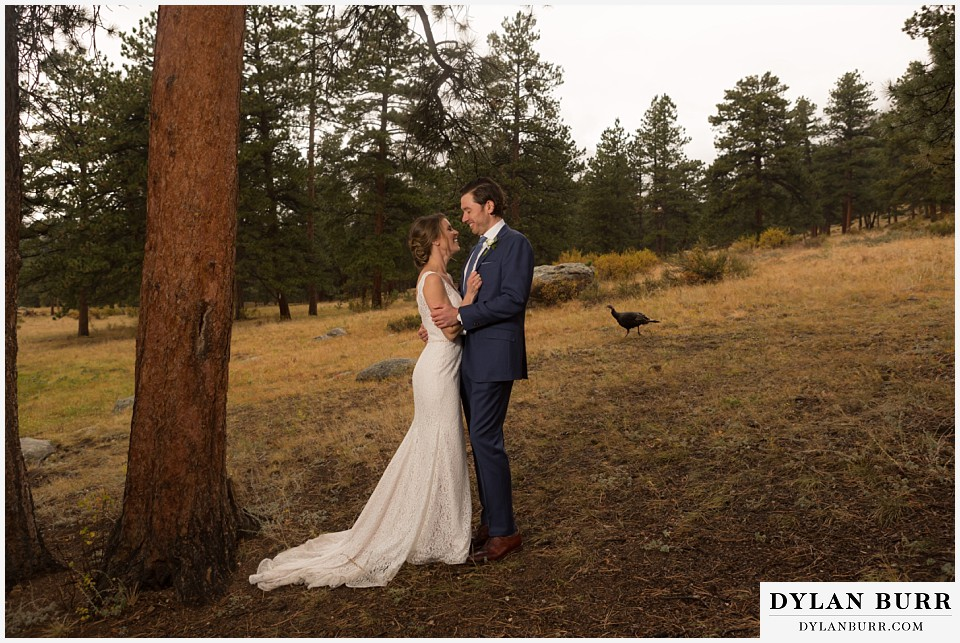 della terra wedding estes park colorado mountain wedding wild turkey walking in background