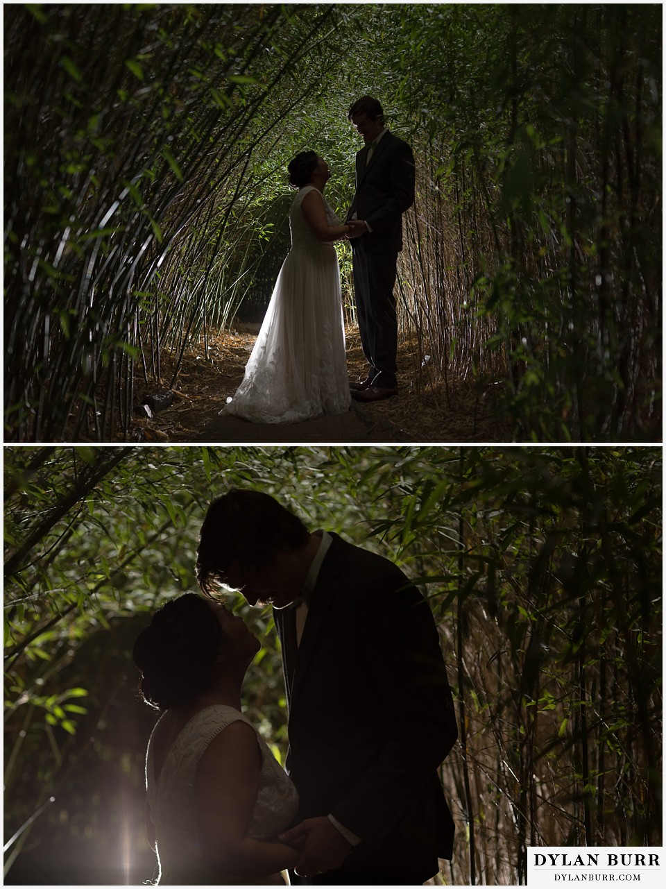 denver botanic gardens wedding colorado woodland mosaic bride groom in bamboo tree tunnel