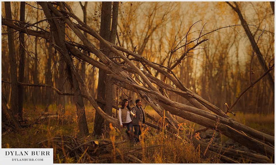 denver engagement photographer woods at sunset