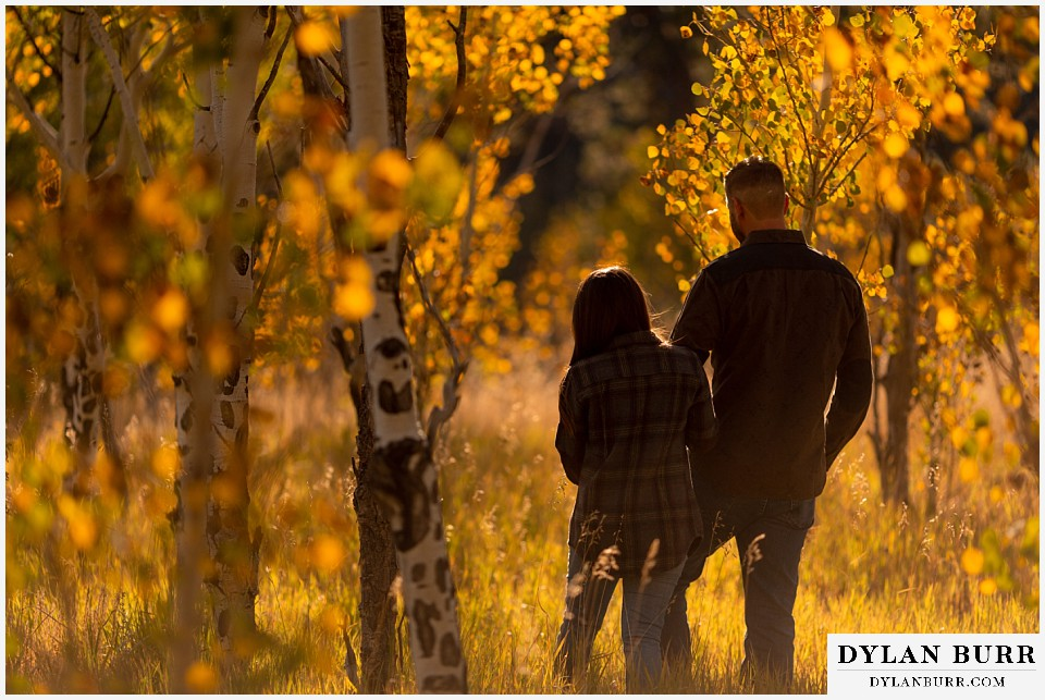 engagement photos golden colorado photographer walking in aspen trees at sunset