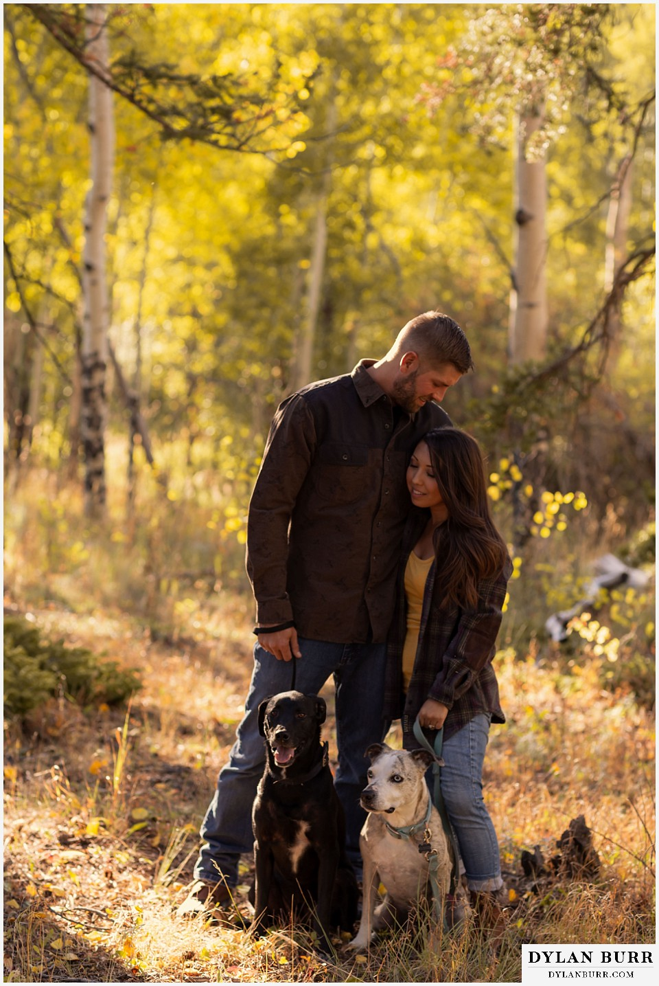 engagement photos golden colorado photographer engaged couple standing with their two dogs in mountains