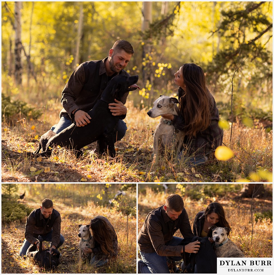 engagement photos golden colorado photographer couple playing with their two rescue dogs