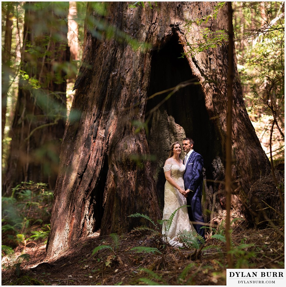 redwood forest wedding elopement avenue of the giants california bride and groom standing side a giant standing redwood tree