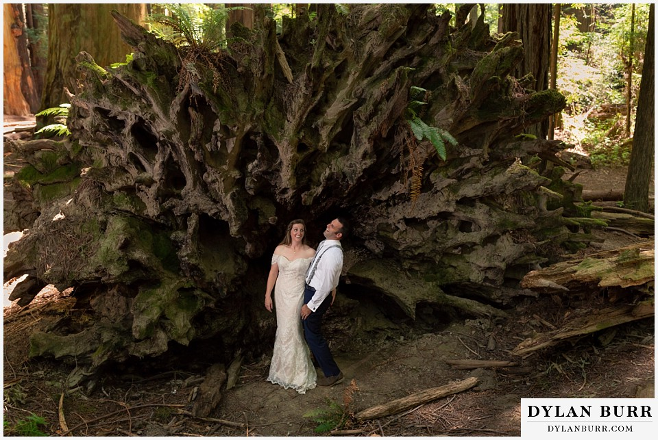 redwood forest wedding elopement avenue of the giants california bride and groom standing in front of tree laughing
