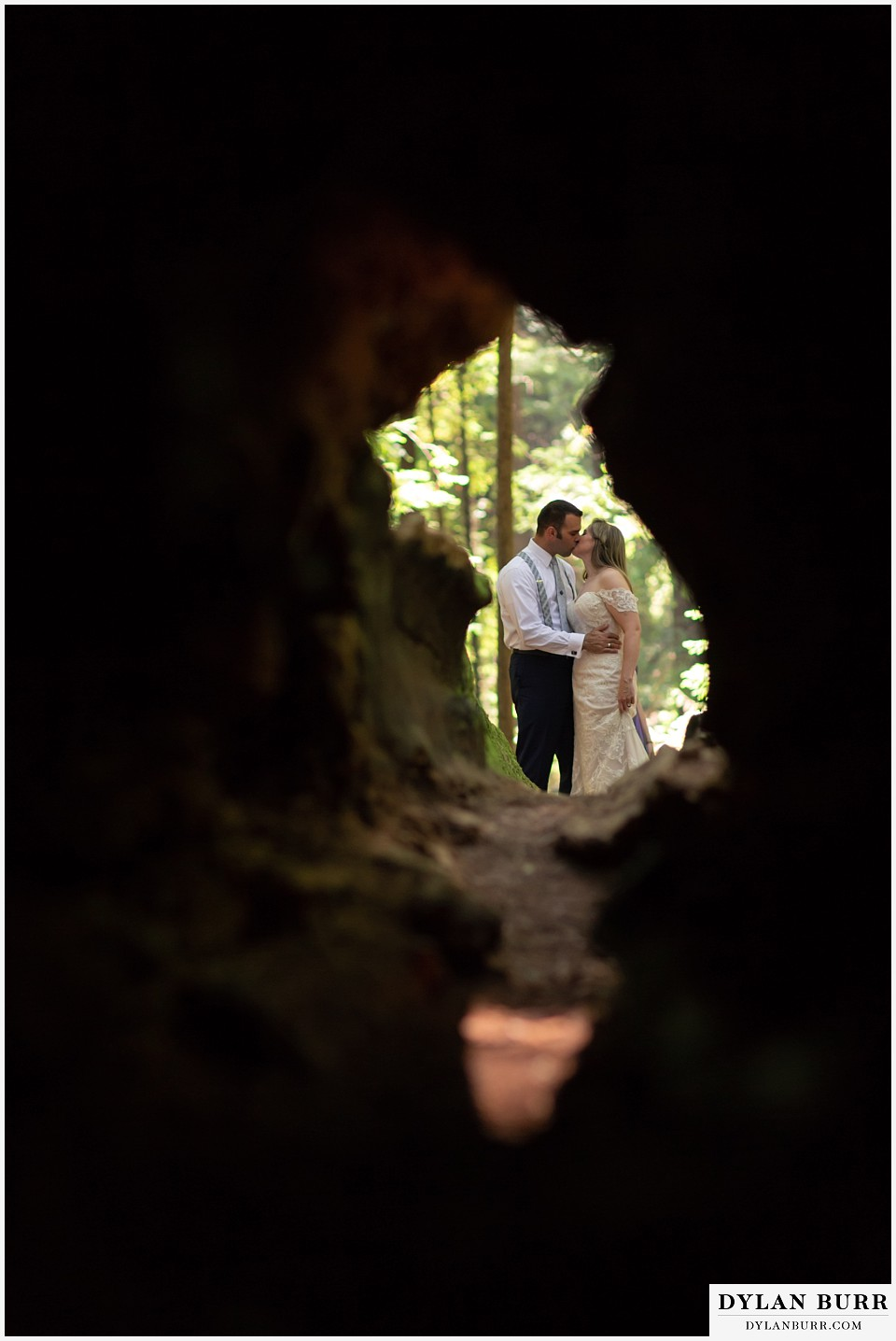 redwood forest wedding elopement avenue of the giants california bride and groom kissing seen through a giant tree