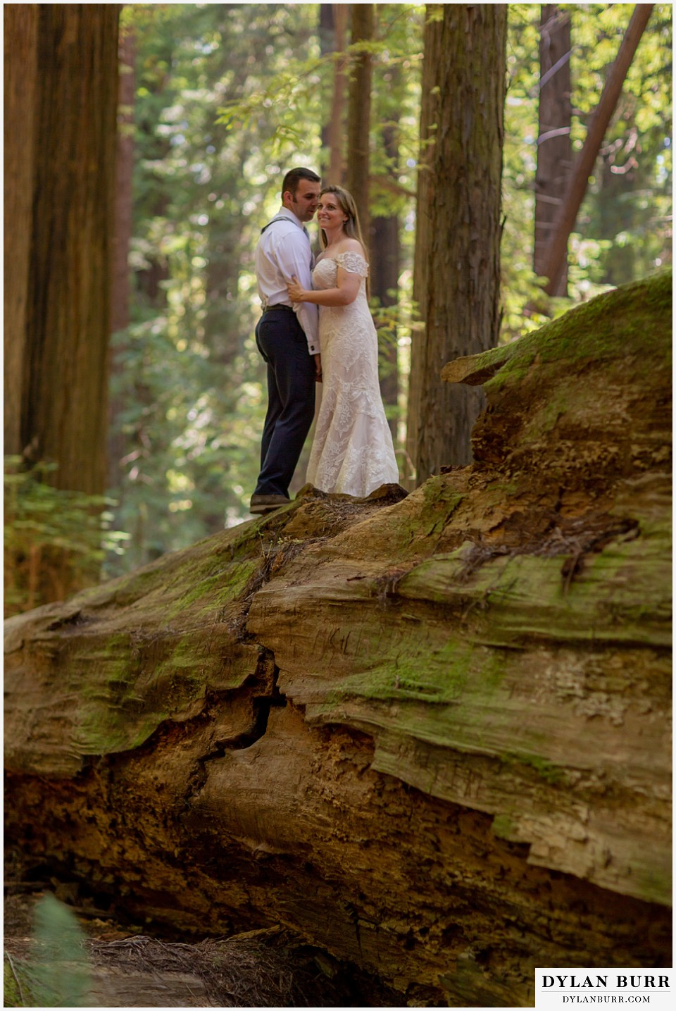 redwood forest wedding elopement avenue of the giants california bride and groom standing together on top of a giant tree