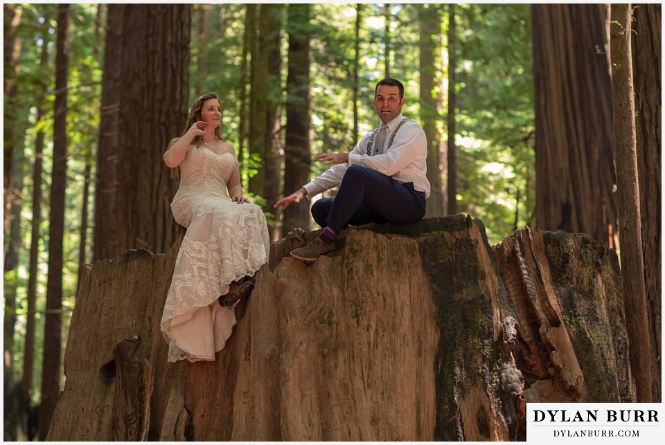 redwood forest wedding elopement avenue of the giants california bride and groom on stump being goofy