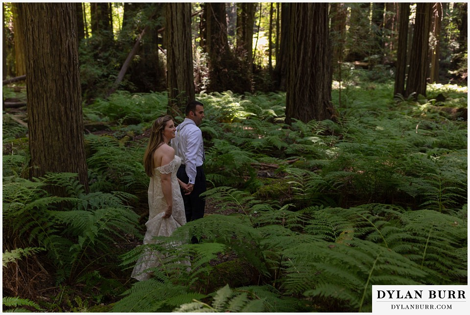 redwood forest wedding elopement avenue of the giants california bride and groom walking into ferns
