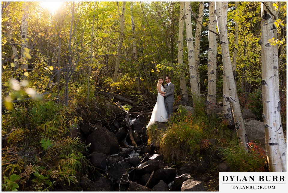 rocky mountain national park elopement wedding wide view of newlyweds in forest with sunlight
