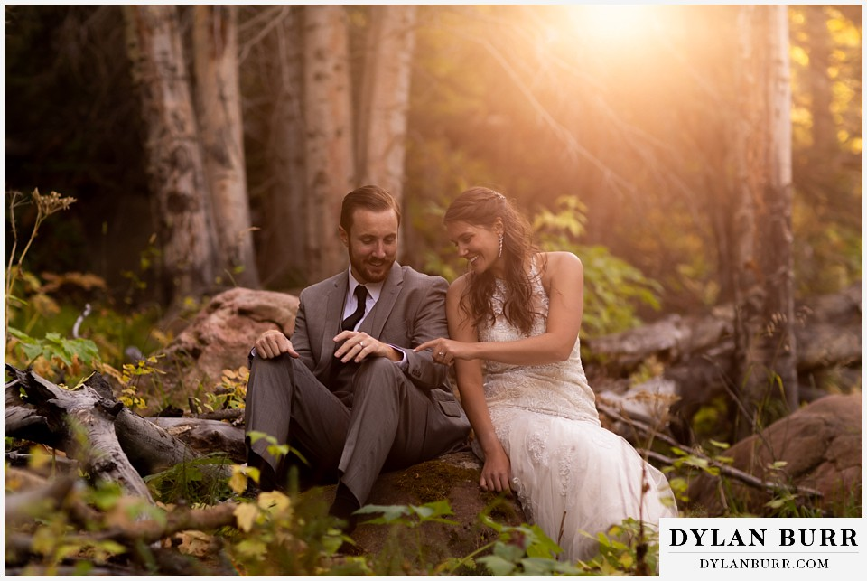 rocky mountain national park elopement wedding couple together on tree with sunset light