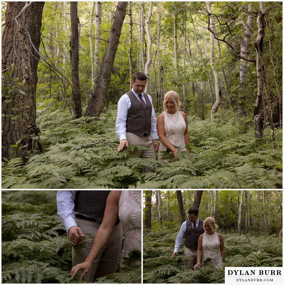 rocky mountain national park wedding elopement bride and groom exploring and surrounded by ferns