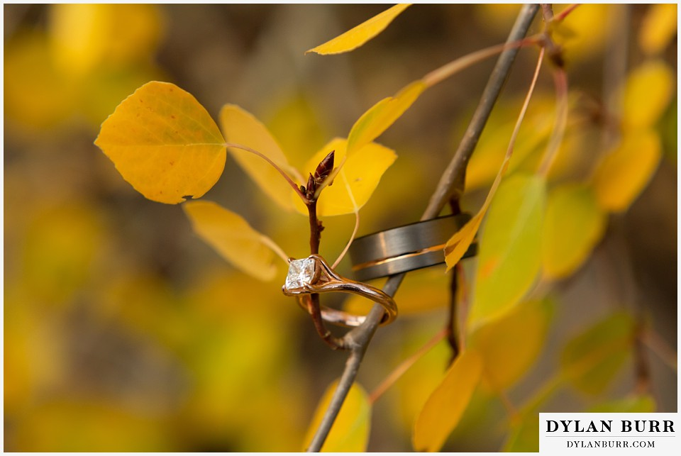winter park mountain lodge wedding colorado wedding rings in aspen leaves